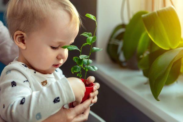 Scoprire la natura a casa con i bambini